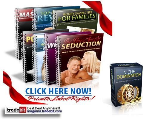 Pay for Niche Domination Collection PLR!