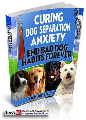 Pay for Curing Dog Separation Anxiety PLR!