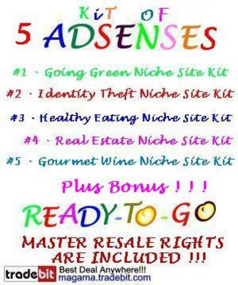Pay for 5 Adsense Niche Site Website Kit Plus MRR!