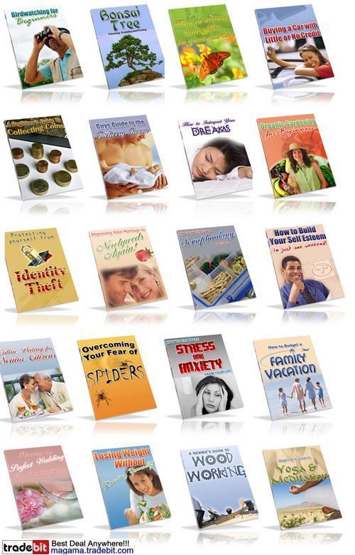 Pay for 20 PLR Ebooks Pack!