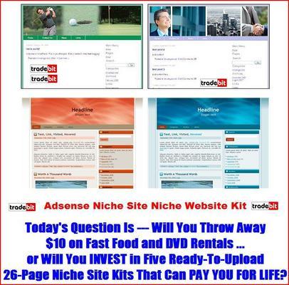 Pay for Adsense Niche Site Niche Website Kit MRR