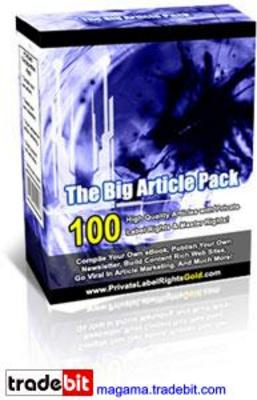 Pay for The Big Article Pack with Master Resale Rights!
