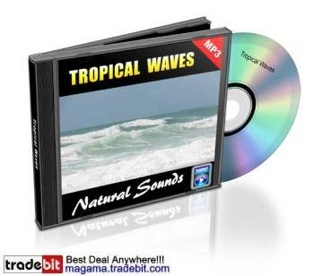 Pay for Tropical Waves Natural Sounds Royalty Free MRR!