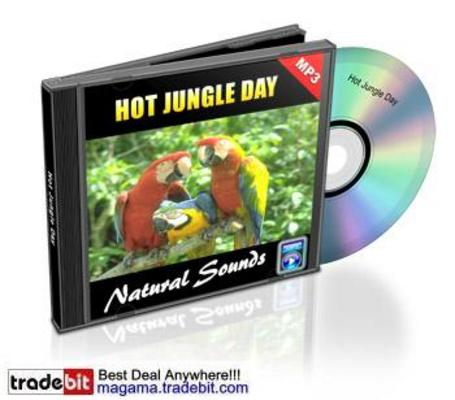 Pay for Hot Jungle Day Natural Sounds Royalty Free MRR!