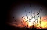 Thumbnail Santa Cruz Sunset