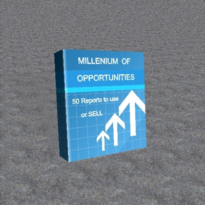 Pay for Opportunities in the new millenium