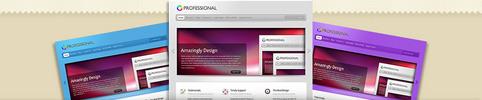 Thumbnail Download The Professional WordPress Theme