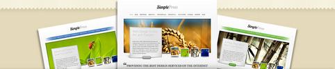 Thumbnail Download SimplePress Simple WordPress Theme