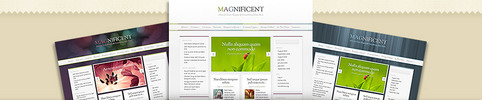 Thumbnail Download Magnificent WordPress Theme