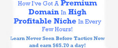 Thumbnail Make $2257 A Month With Premium Domains