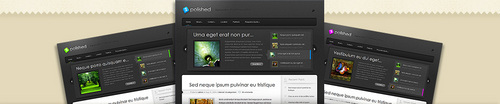 Pay for Download Polished WordPress Theme