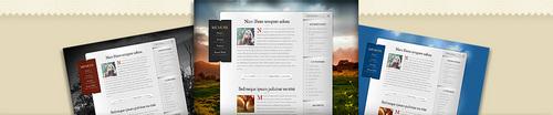 Pay for Download Memoir WordPress Theme