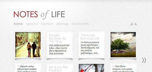 Pay for Download DailyNotes WordPress Theme