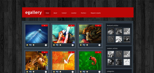 Pay for Download eGallery WordPress Theme