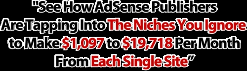 Pay for See How Adsense Publishers Make $1,097 to $19,718 Per Month From Each Single Site