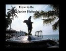 Thumbnail Marine Biology as a Career -How to Become a Marine Biologis