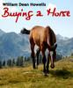 Thumbnail Buying a Horse PLR