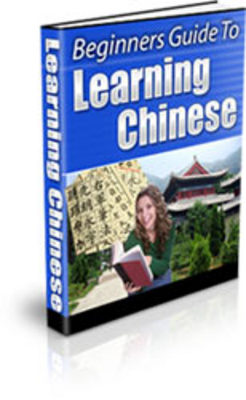 Pay for Beginners Guide to Learning Chinese PLR