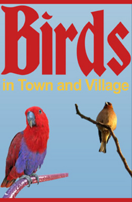 Pay for Birds in Town and Village PLR