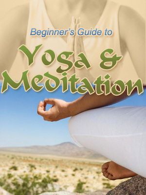 Pay for The Beginners Guide to Yoga and Meditation PLR