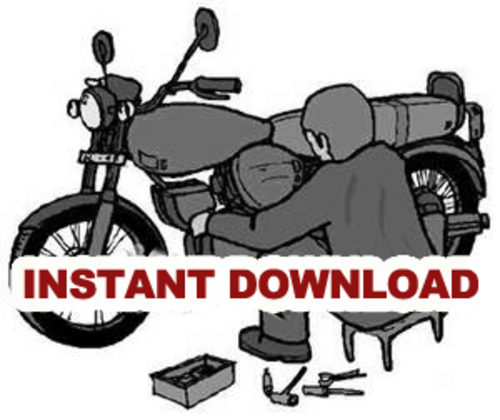 Pay for DOWNLOAD Honda TRX300EX TRX 300EX 93-00 Repair Manual