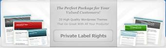 Thumbnail 10 WordPress Templates & 10 Sales Page Templates - MRR & PLR