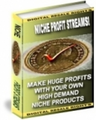 Pay for Niche Profit Streams With Master Resale Rights