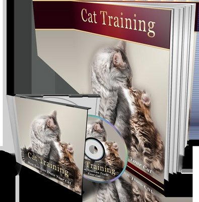 Pay for Cat Training MP3 Audio Book and E-book with MRR