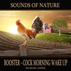 Thumbnail Rooster - Cock Morning Wake Up -Nature RINGTONE