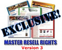 Thumbnail 85 Niche Sites Version 3 - MRR