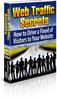 Thumbnail NEW Web Traffic Secrets With MRR