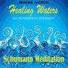Thumbnail Schumann Meditation (Healing Waters: Self Help Brainwave Ent