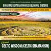 Thumbnail Celtic Wisdom (Celtic Shamanism)