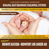 Thumbnail Midwife Success - Midwifery Job Career Aid