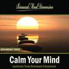 Thumbnail Calm Your Mind: Isochronic Tones Brainwave Entrainment