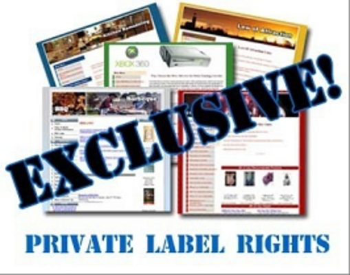 Pay for 85 Exclusive Niche Sites Niche Website Templates For Your We