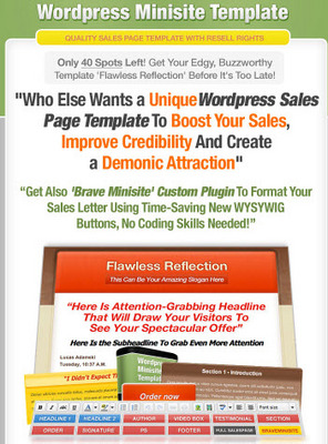 Pay for Flawless Reflection Wordpress Minisite Template