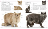Thumbnail The Cat Encyclopedia: The Definitive Visual Guide