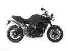 Thumbnail TRIUMPH SPEED TRIPLE 1050 2005+ BIKE REPAIR SERVICE MANUAL