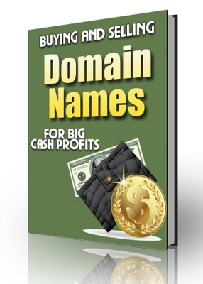 how to start domain selling business