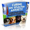 Thumbnail Curing Dog Separation Anxiety With Plr