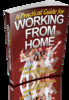 Thumbnail A Practical Guide for Working from Home (PLR)