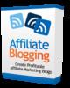 Thumbnail Affiliate Blogging - Video Series PLR