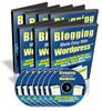 Thumbnail Blogging Made Easy with WordPress v 2.X PLR