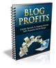 Thumbnail Blog Profits (PLR)