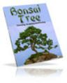 Thumbnail Bonsai Tree plr
