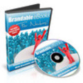 Thumbnail Brandable eBooks for Newbies - Video Series plr