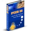 Thumbnail iPods 101 (PLR)