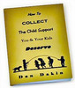 Thumbnail How to Collect Child Support PLR