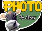 Thumbnail Photo Re-Sizer plr